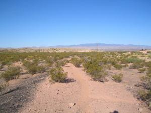 grade looking west to San Antonio NM