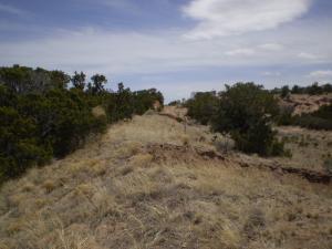 Last cut grade entering Santa Fe south of 599 bypss